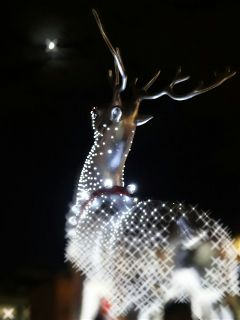 wapchristmaslights christmas freetoedit