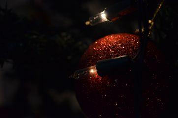 wapchristmaslights