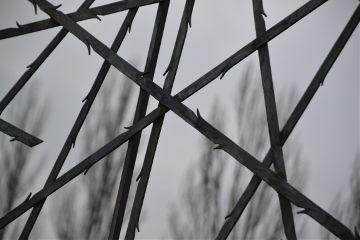 winter freedom cold dachau