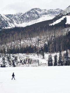 wapwhite winter mountains